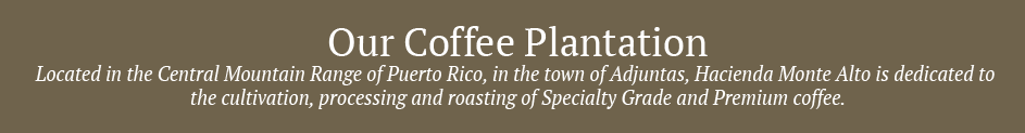 ourcoffeeplantation